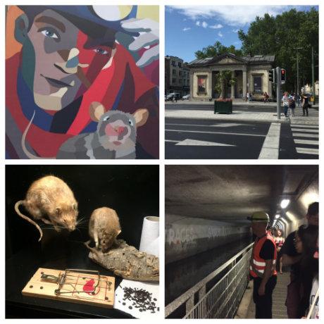 collage de photos du musée bruxellois des égouts