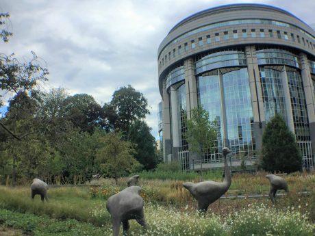 Scuptures insolites d'autruches au Parc Léopold à Bruxelles